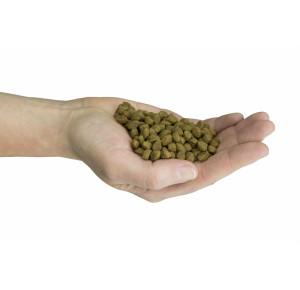 Felinity Outdoor croquettes pour femelle d'extérieur de 1,5 kg