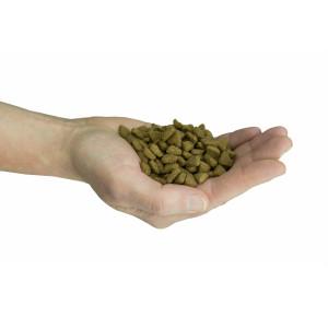 Felinity Indoor croquettes pour mâle d'intérieur de 1,5 kg