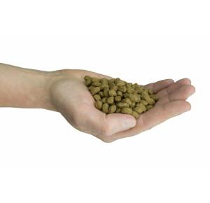 Felinity Indoor  croquettes pour femelle d'intérieur Sac de 1,5 kg